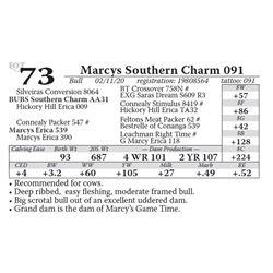 Marcys Southern Charm 091