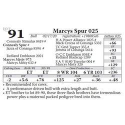 Marcys Spur 025