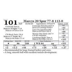Marcys 20 Spur 77-8 112-0