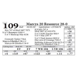 Marcys 20 Resource 28-0