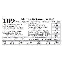 Marcys 20 Resource 28-0