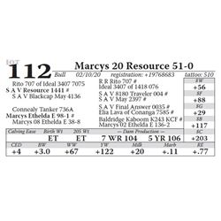 Marcys 20 Resource 51-0
