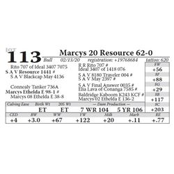 Marcys 20 Resource 62-0