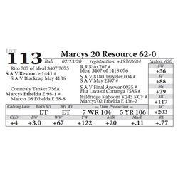 Marcys 20 Resource 62-0