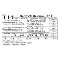 Marcys 20 Resource 167-0