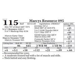Marcys Resource 095