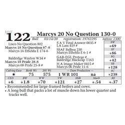 Marcys 20 No Question 130-0