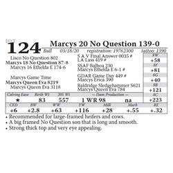 Marcys 20 No Question 139-0