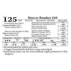 Marcys Bomber 049