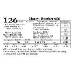Marcys Bomber 056