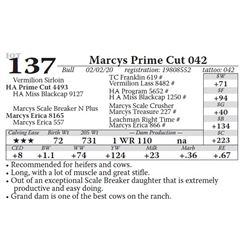 Marcys Prime Cut 042