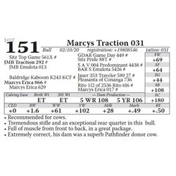 Marcys Traction 031