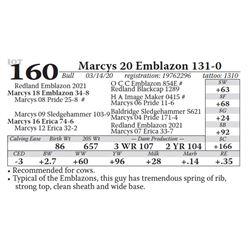 Marcys 20 Emblazon 131-0