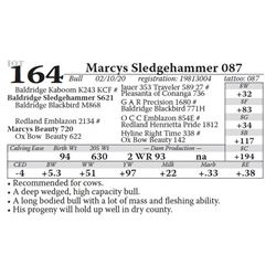 Marcys Sledgehammer 087