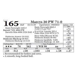 Marcys 20 PW 71-0