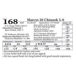Marcys 20 Chinook 5-0