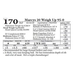 Marcys 20 Weigh Up 95-0