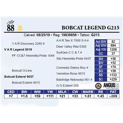 Bobcat Legend G215