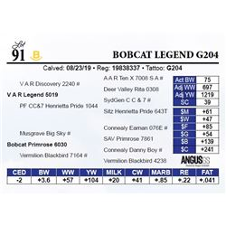 Bobcat Legend G204