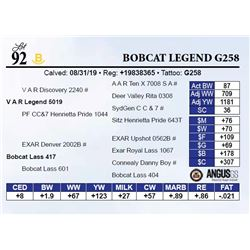 Bobcat Legend G258