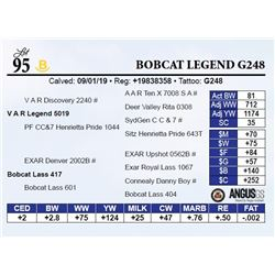 Bobcat Legend G248