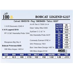 Bobcat  Legend G227