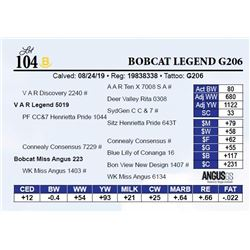 Bobcat Legend G206