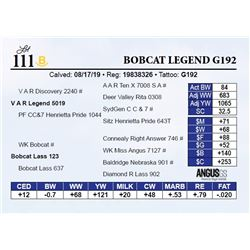 Bobcat Legend G192