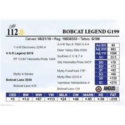 Bobcat Legend G199