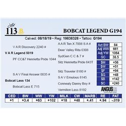 Bobcat Legend G194