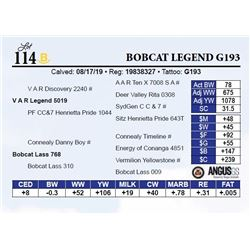 Bobcat Legend G193