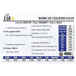 Bobcat Legend G219