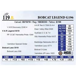 Bobcat Legend G196