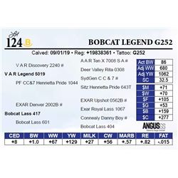Bobcat Legend G252