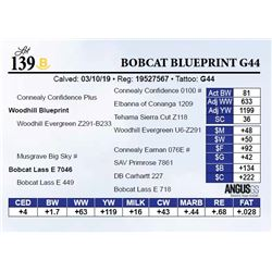 Bobcat Blueprint G44