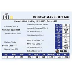 Bobcat Mark Out G87
