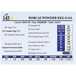 Bobcat Powder Keg G141