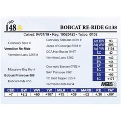 Bobcat Re-Ride G138