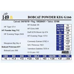 Bobcat Powder Keg G166