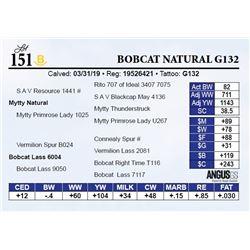 Bobcat Natural G132