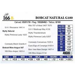 Bobcat Natural G180