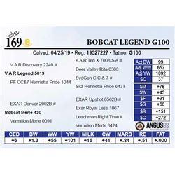 Bobcat Legend G100
