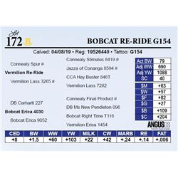 Bobcat Re-Ride G154
