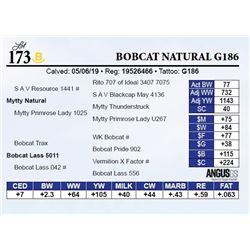 Bobcat Natural G186