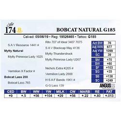 Bobcat Natural G185