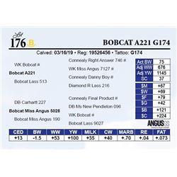 Bobcat A221 G174