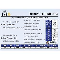 Bobcat Legend G104