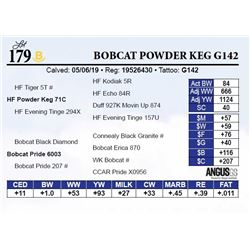 Bobcat Powder Keg G142