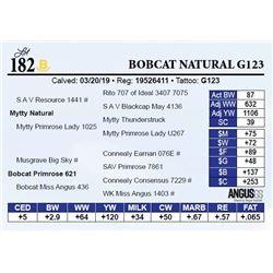 Bobcat Natural G123