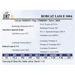 Bobcat Lass E 3004
